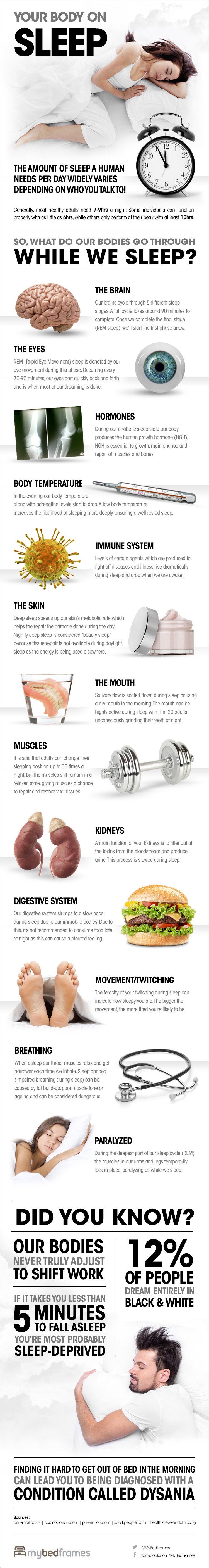 Your-Body-on-Sleep